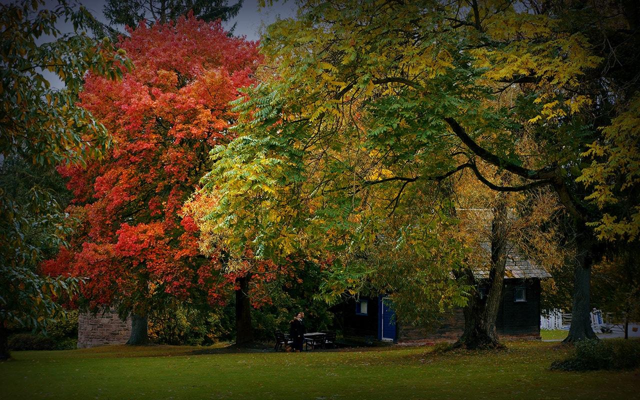 BG-Internat-Solling-Park-im-Herbst