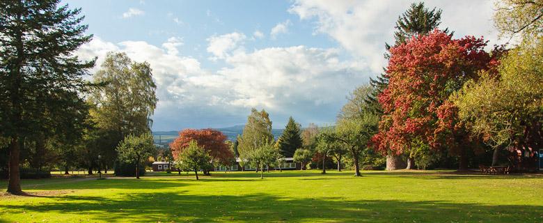 Internat-Solling-Park-im-Herbst